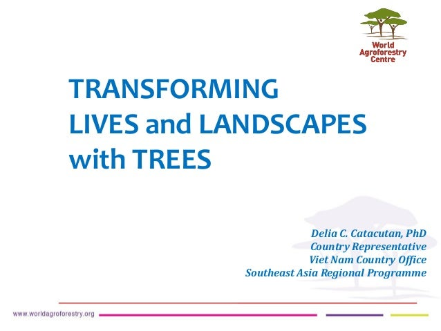 TRANSFORMING LIVES and LANDSCAPES with TREES Delia C. Catacutan, PhD Country Representative Viet Nam Country Office Southe...