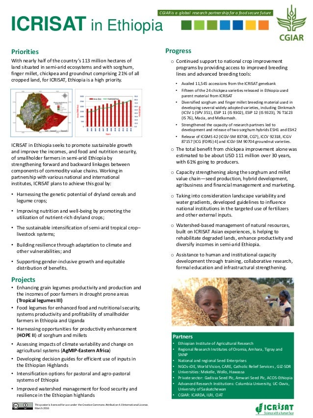 ICRISAT in Ethiopia Progress o Continued support to national crop improvement programs by providing access to improved bre...