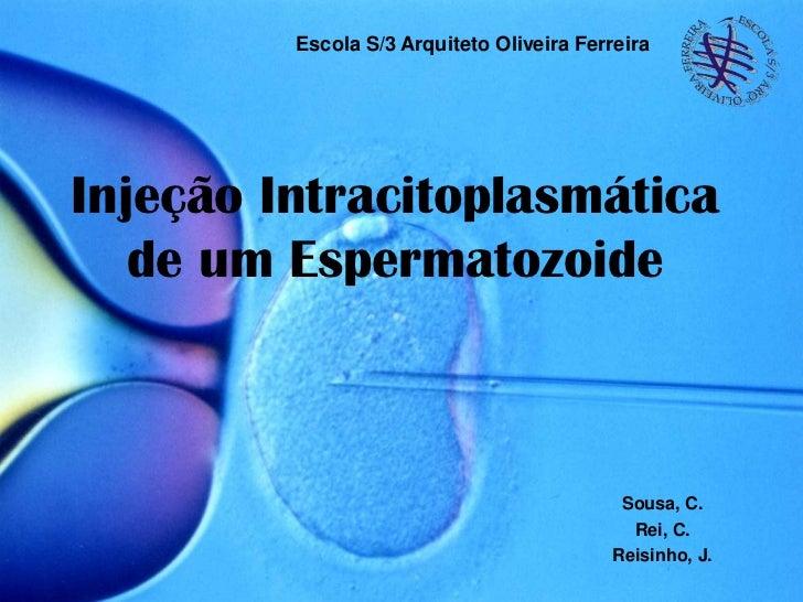 Escola S/3 Arquiteto Oliveira FerreiraInjeção Intracitoplasmática   de um Espermatozoide                                  ...