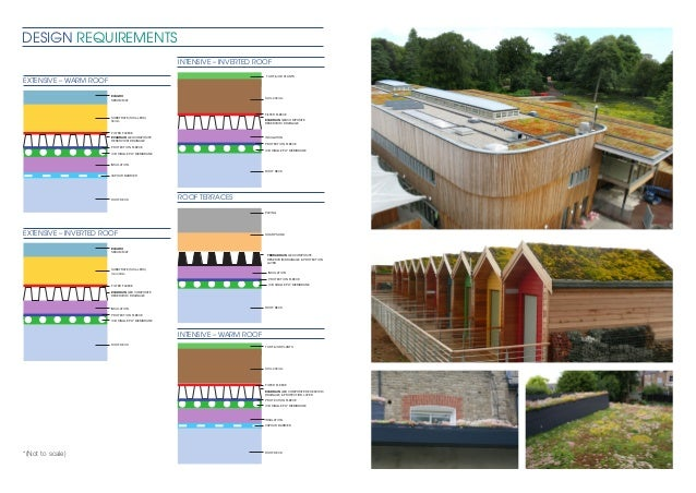 Evagreen Green Roof Case Study Icb