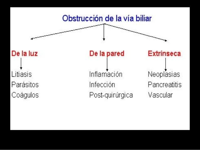 Hiperbilirubinemia directa • Elevaciones aisladas de bilirrubina directa: Algunas enfermedades genéticas poco frecuentes s...