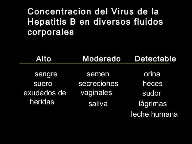 Diagnóstico de Laboratorio • Anticuerpo Anti-VHCAnticuerpo Anti-VHC – generalmente se usa para diagnosticar la infección p...