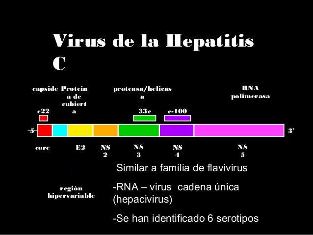  Periodo de Incubación: Media 40 días Rango15-60 días  Hepatitis fulminante: 1%-3% Gestantes,15%-25%  Gravedad de la in...