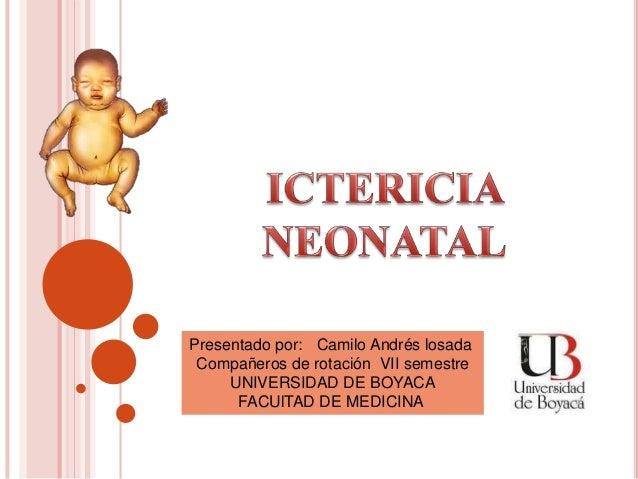 Presentado por: Camilo Andrés losada Compañeros de rotación VII semestre UNIVERSIDAD DE BOYACA FACUlTAD DE MEDICINA