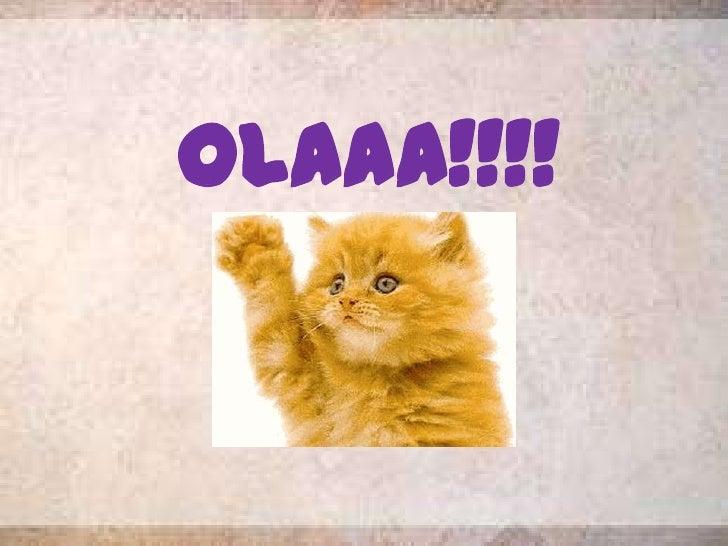 OLAAA!!!!