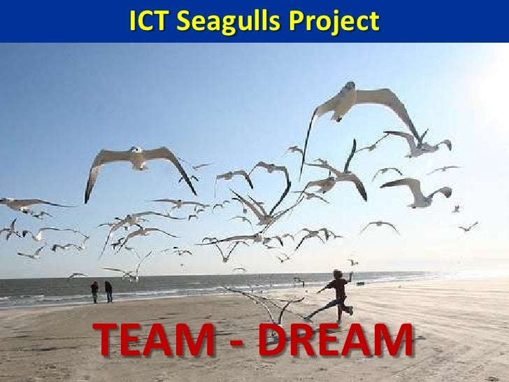 ICT Seagulls Project<br />TEAM - DREAM<br />