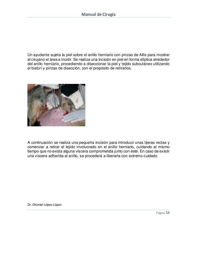 Curso de Cirugía Veterinaria