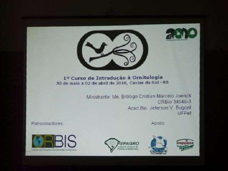 I curso de introdução à ornitologia