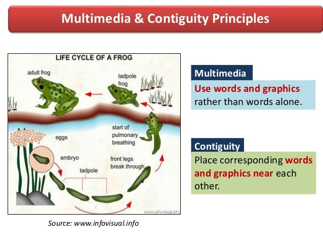 Multimedia & Contiguity PrinciplesMultimediaContiguityPlace corresponding wordsand graphics near eachother.Use words and g...
