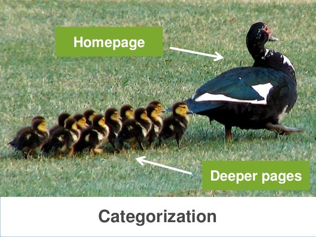 CategorizationHomepageDeeper pages