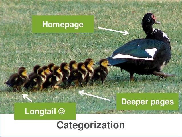 CategorizationHomepageDeeper pagesLongtail 