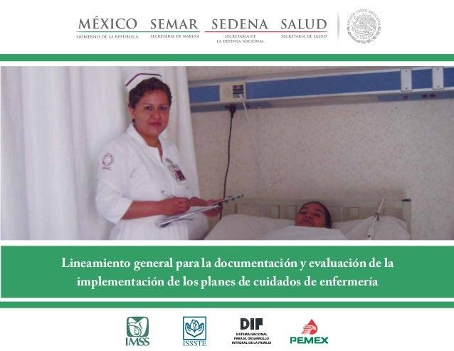 Lineamiento general para la documentación y evaluación de la implementación de los planes de cuidados de enfermería