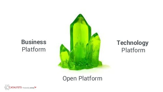 Business Platform Technology Platform Open Platform