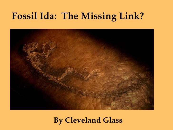 Fossil Ida: The Missing Link?              By Cleveland Glass
