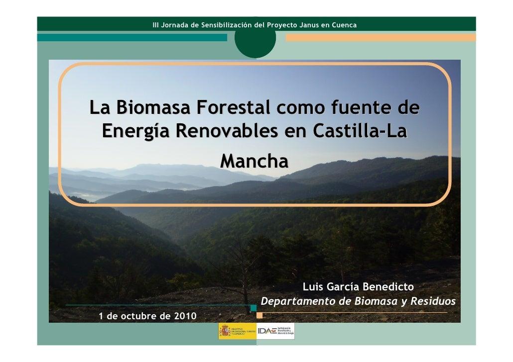 III Jornada de Sensibilización del Proyecto Janus en CuencaLa Biomasa Forestal como fuente de Energía Renovables en Castil...