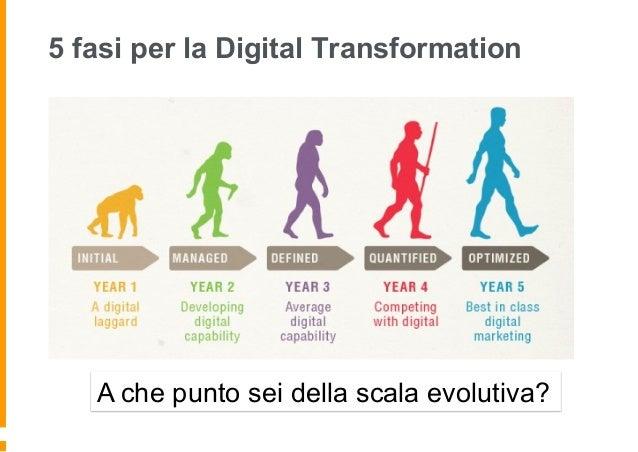 Processo evolutivo in 5 fasi