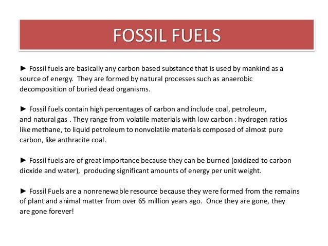 Can Alternative Energy Sources Replace Fossil Fuels Environmental Sciences Essay