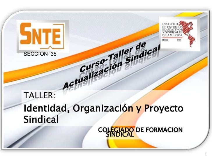 SECCION 35TALLER:Identidad, Organización y ProyectoSindical               COLEGIADO DE FORMACION                 SINDICAL ...