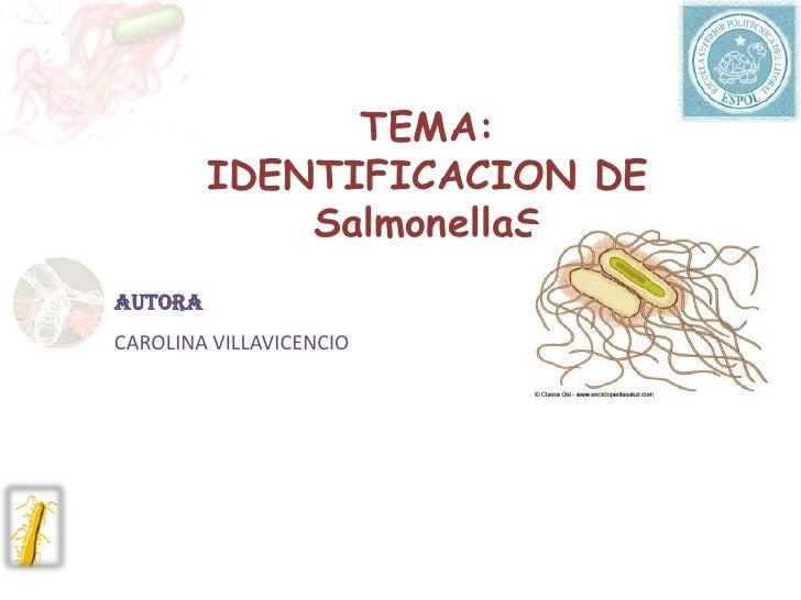 TEMA: IDENTIFICACION DE SalmonellaS<br />AUTORA<br />CAROLINA VILLAVICENCIO<br />