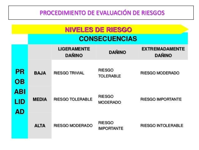 PROCEDIMIENTO DE EVALUACIÓN DE RIESGOS                   NIVELES DE RIESGO                       CONSECUENCIAS            ...