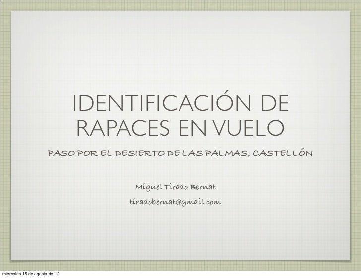IDENTIFICACIÓN DE                                RAPACES EN VUELO                      PASO POR EL DESIERTO DE LAS PALMAS,...