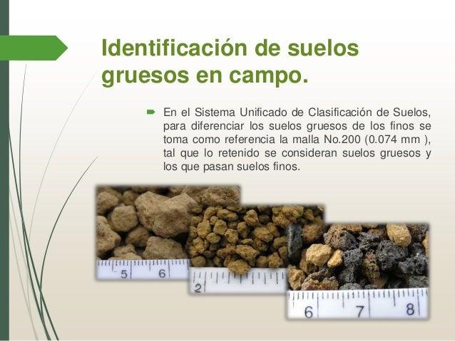 manual y visual de muestras de suelo