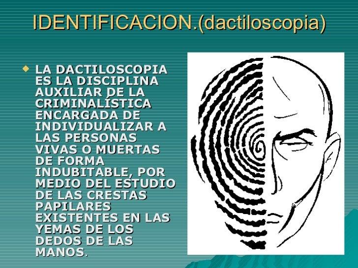 IDENTIFICACION.(dactiloscopia) <ul><li>LA DACTILOSCOPIA ES LA DISCIPLINA AUXILIAR DE LA CRIMINALÍSTICA ENCARGADA DE INDIVI...