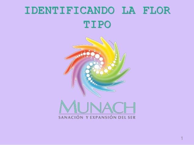 IDENTIFICANDO LA FLOR TIPO 1