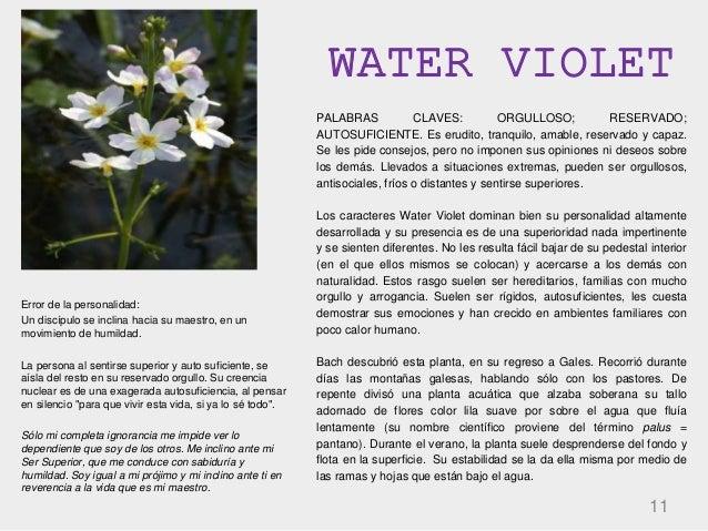WATER VIOLET 11 PALABRAS CLAVES: ORGULLOSO; RESERVADO; AUTOSUFICIENTE. Es erudito, tranquilo, amable, reservado y capaz. S...