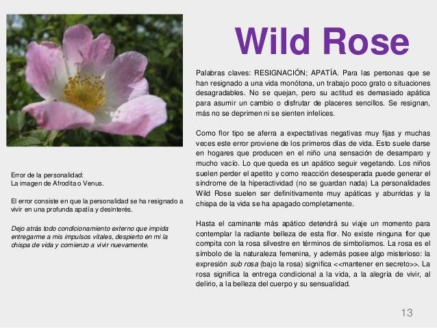 Wild Rose 13 Palabras claves: RESIGNACIÓN; APATÍA. Para las personas que se han resignado a una vida monótona, un trabajo ...
