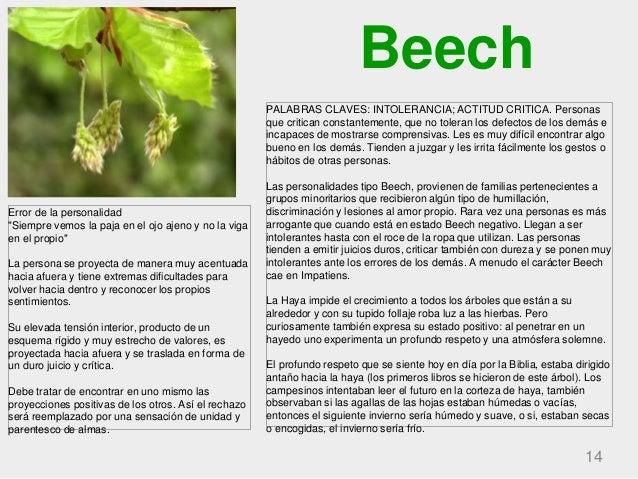 Beech 14 PALABRAS CLAVES: INTOLERANCIA; ACTITUD CRITICA. Personas que critican constantemente, que no toleran los defectos...