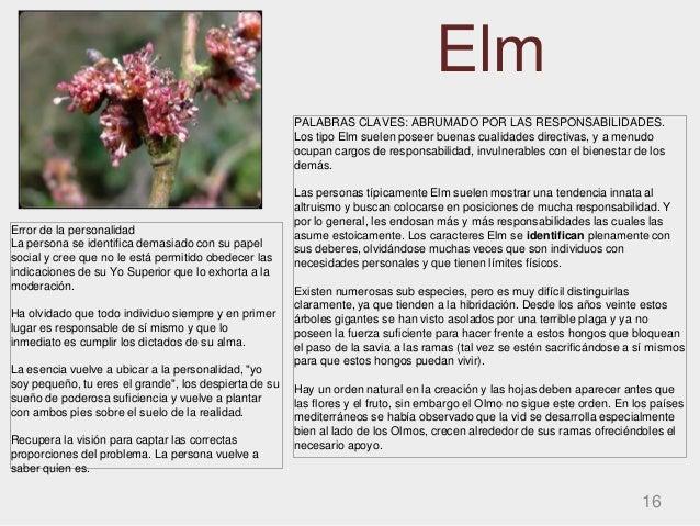 Elm 16 PALABRAS CLAVES: ABRUMADO POR LAS RESPONSABILIDADES. Los tipo Elm suelen poseer buenas cualidades directivas, y a m...