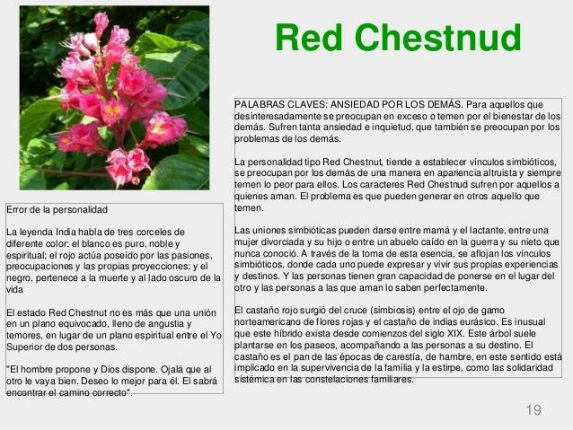 Red Chestnud 19 PALABRAS CLAVES: ANSIEDAD POR LOS DEMÁS. Para aquellos que desinteresadamente se preocupan en exceso o tem...
