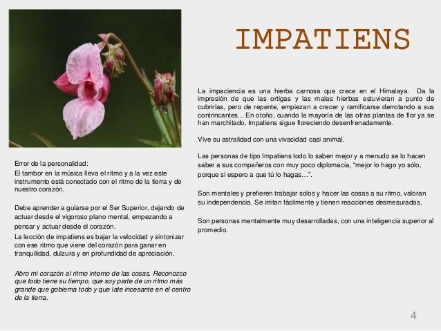 IMPATIENS 4 La impaciencia es una hierba carnosa que crece en el Himalaya. Da la impresión de que las ortigas y las malas ...