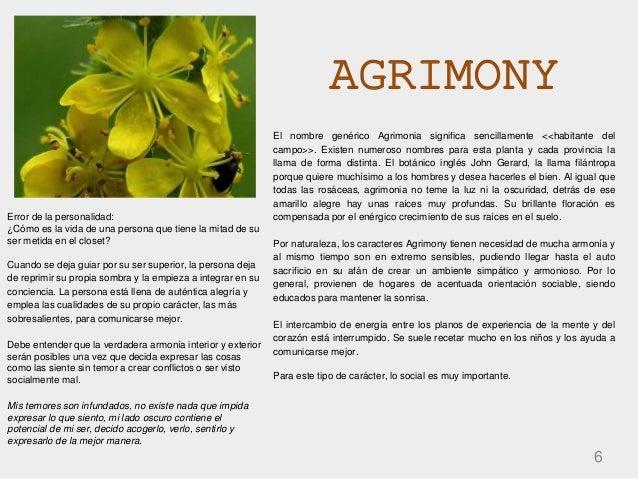 AGRIMONY 6 El nombre genérico Agrimonia significa sencillamente <<habitante del campo>>. Existen numeroso nombres para est...