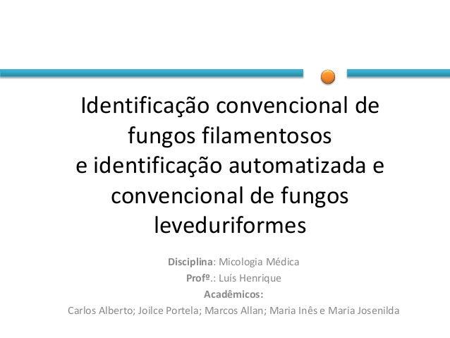 Identificação convencional de fungos filamentosos e identificação automatizada e convencional de fungos leveduriformes Dis...