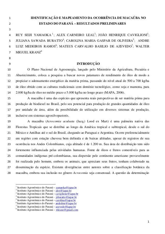 IDENTIFICAÇÃO E MAPEAMENTO DA OCORRÊNCIA DE MACAÚBA NO 1 ESTADO DO PARANÁ – RESULTADOS PRELIMINARES 2  3  RUY SEIJI YAMAOK...