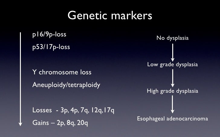 Genetic markers p16/9p-loss                          No dysplasia p53/17p-loss                                    Low grad...