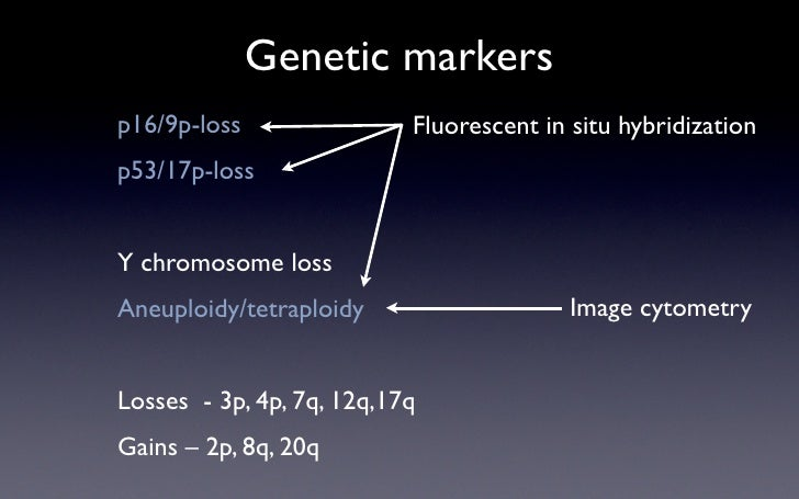 Genetic markers p16/9p-loss                Fluorescent in situ hybridization p53/17p-loss   Y chromosome loss             ...