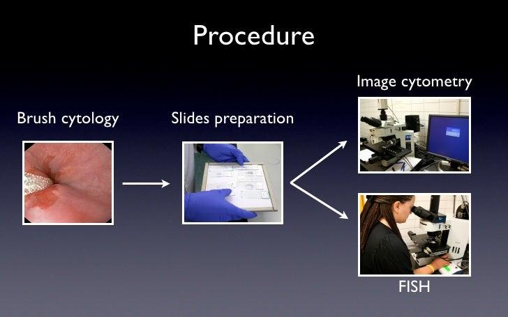 Procedure                                       Image cytometry  Brush cytology   Slides preparation                      ...