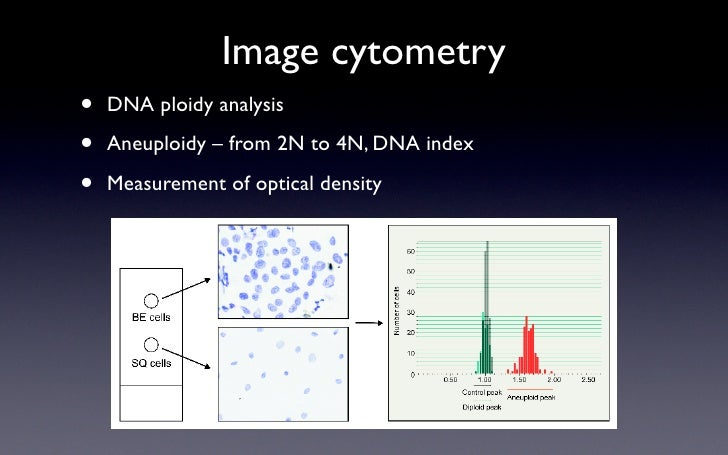 Image cytometry •   DNA ploidy analysis  •   Aneuploidy – from 2N to 4N, DNA index  •   Measurement of optical density