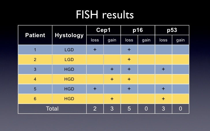 FISH results                              Cep1             p16            p53 Patient      Hystology                      ...