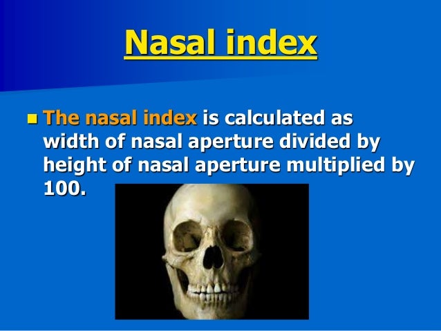 ways to identify skeletal remains