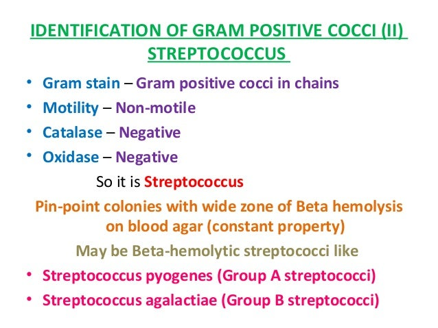 "identifying gram positive cocci essay Access the ""identifying bacteria"" multimedia (neither gram positive nor gram are you looking for a similar paper or any other quality academic essay."