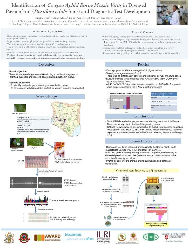 Identification of cowpea aphid borne mosaic virus in diseased passionfruit (Passiflora edulis Sims) and diagnostic test de...
