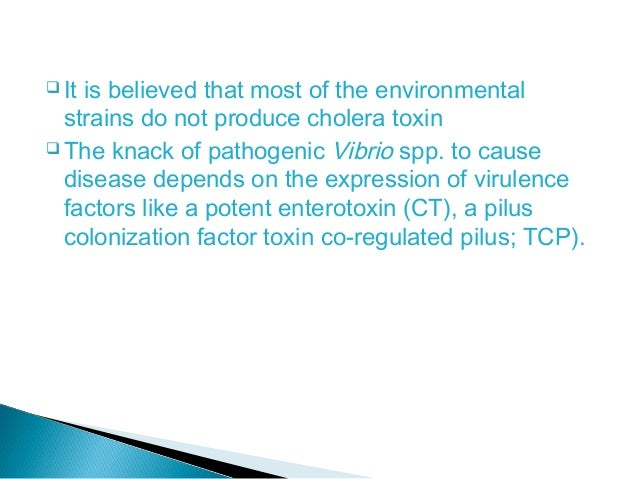 an investigation of vibrio cholera Management cases investigation if possible, identify the serogroup of vibrio cholerae in consultation with the attending medical practitioner, identify possible exposure, including time and place of travel, and return flight/ship restriction exclude from work food handlers and carers of patients, children and.