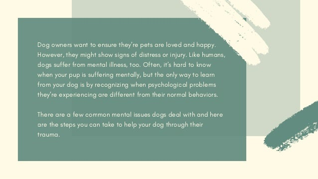 Identifying and Helping Your Dog's Anxiety Slide 2