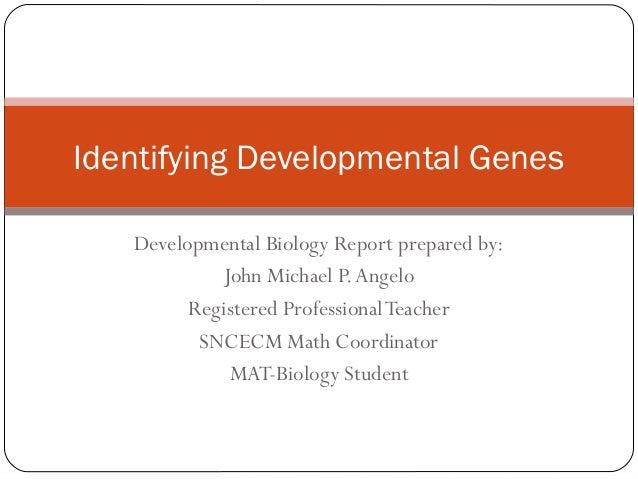 Identifying Developmental Genes Developmental Biology Report prepared by: John Michael P. Angelo Registered Professional T...