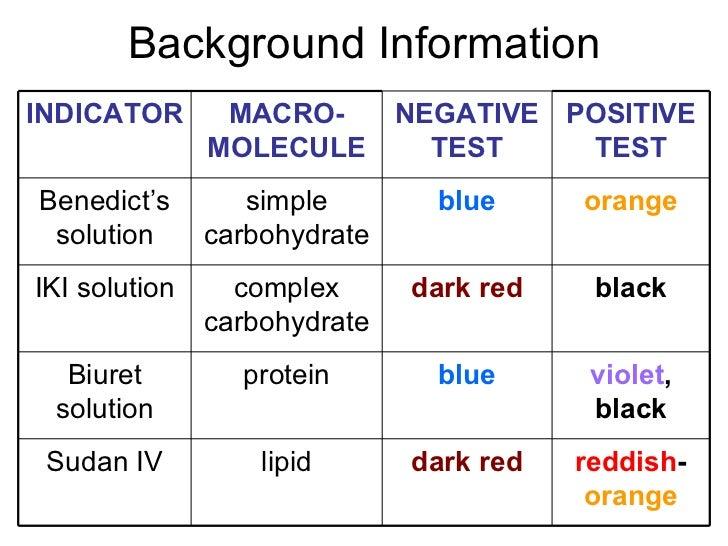 Identifying Macromolecules In Food