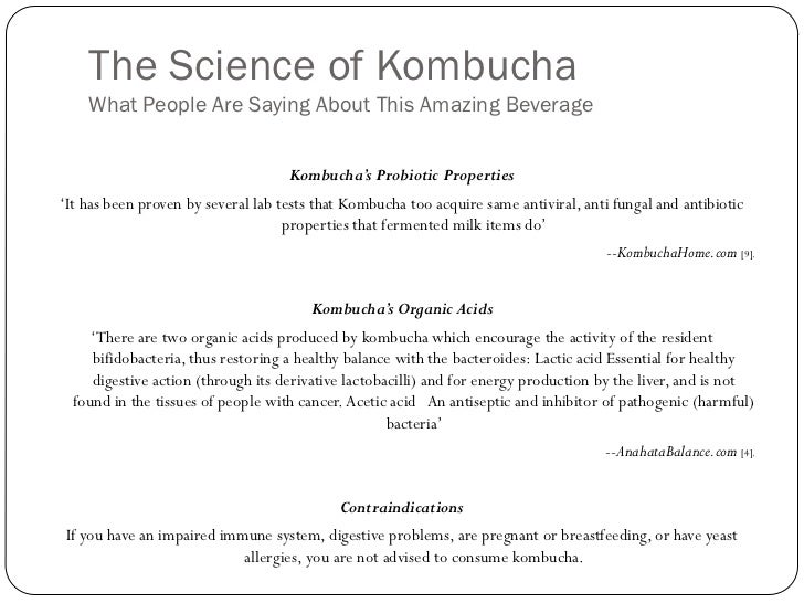 kombucha business plan